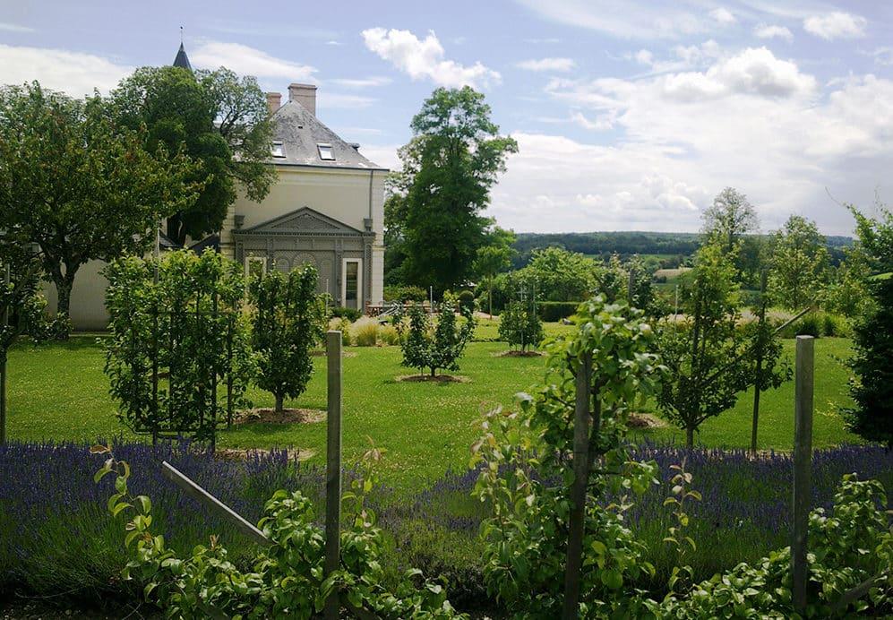 Palette végétale : Quels végétaux pour votre jardin ? - Lantana Paysage
